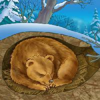 Pixwords The image with bear, winter, sleep, cold, nature Alexander Kukushkin - Dreamstime